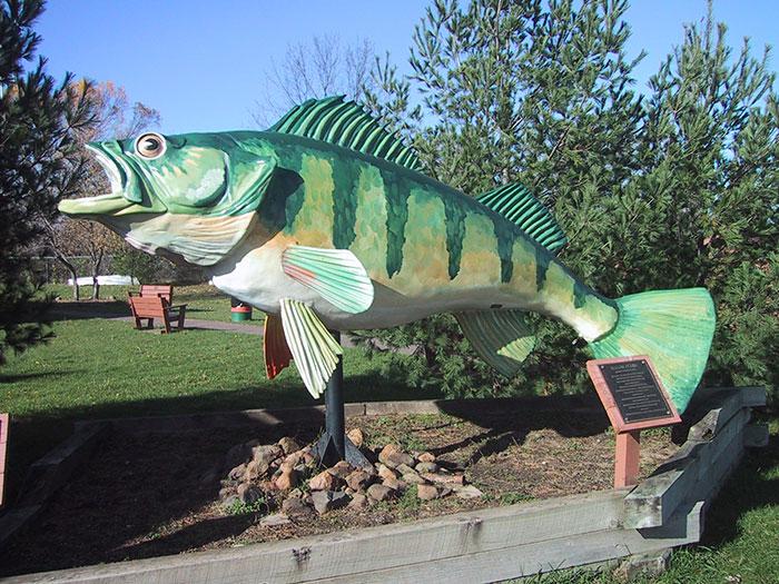 museum-bass